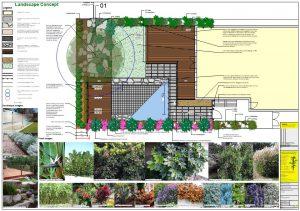 Box Hill Landscape Design Pool