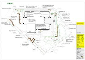 Heathmont Landscape Design Plants