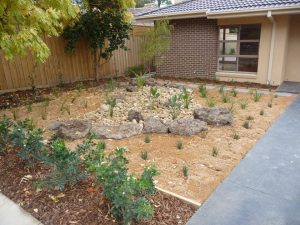 Another Dry Creek Bed