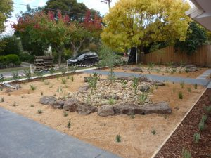 Front Dry Creek Bed