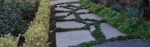 Hawthorn Landscape Design