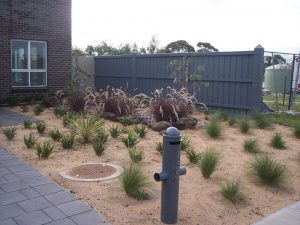 Landscape Design Patterson Lakes