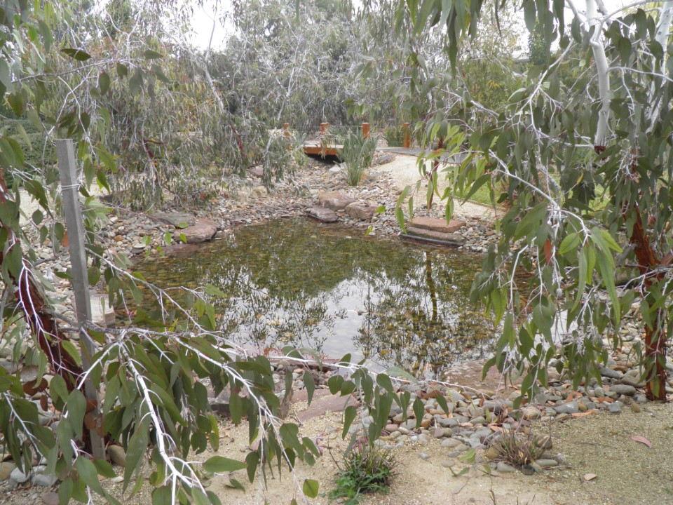 Landscaped Pond