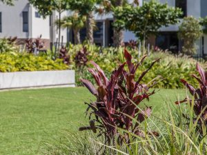 Landscape Design Brisbane 09