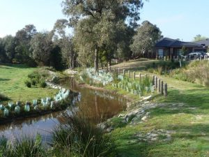 Landscaping Wetlands 07
