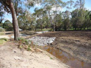 Wetlands Landscape Construction 08