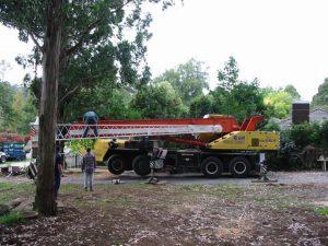 03 Crane For Dangerous Tree